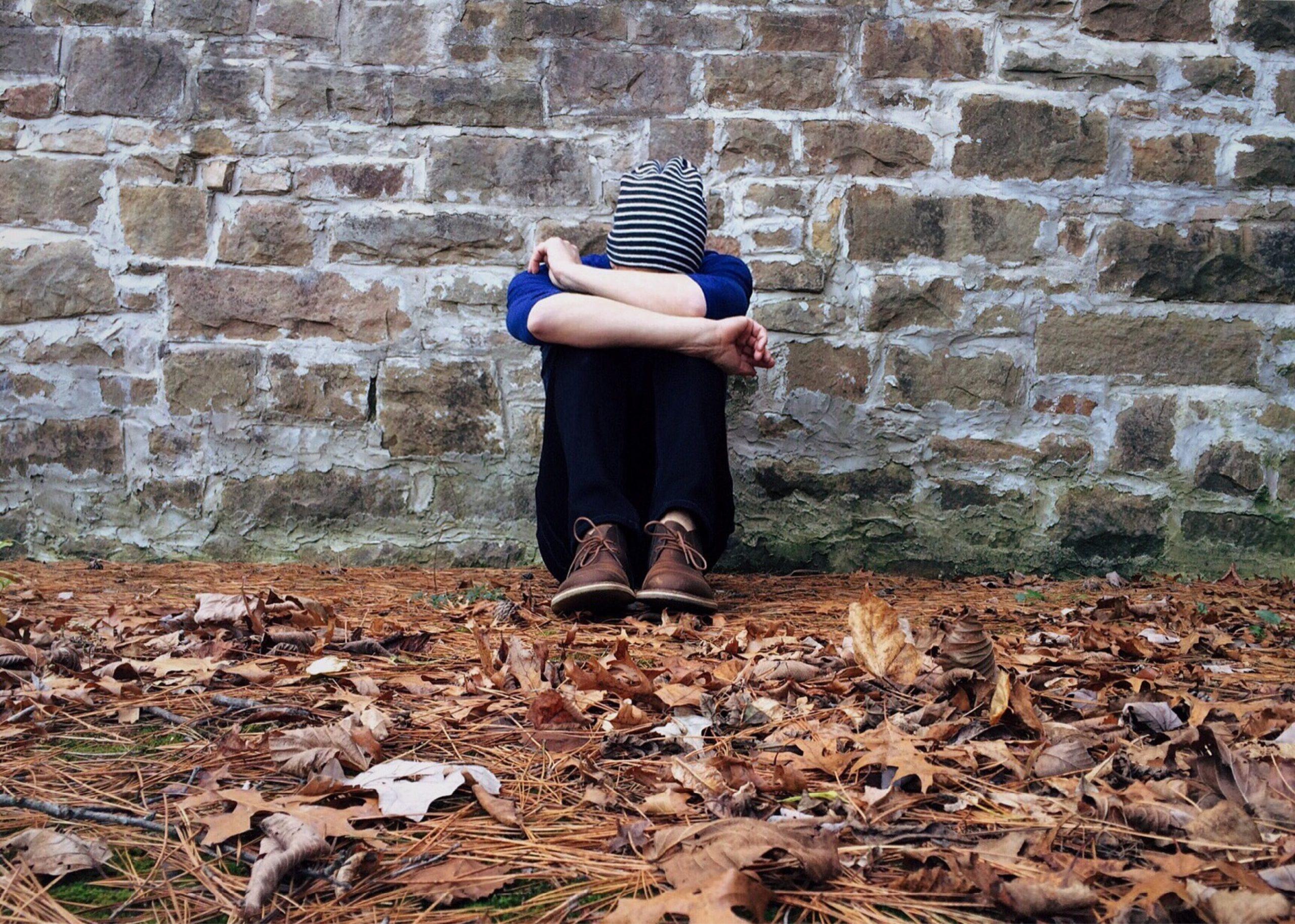 Intelligence émotionnelle - Acquérir un équilibre émotionnel